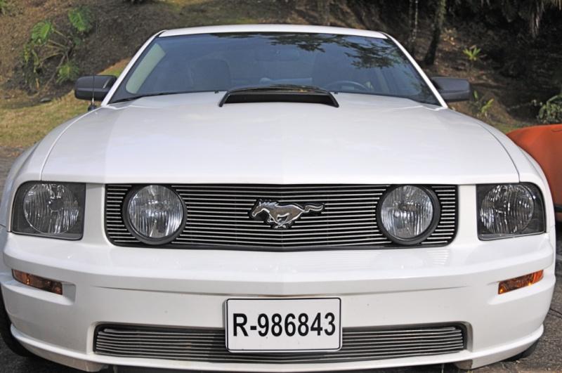 Balade en voitures de collection Mustan10
