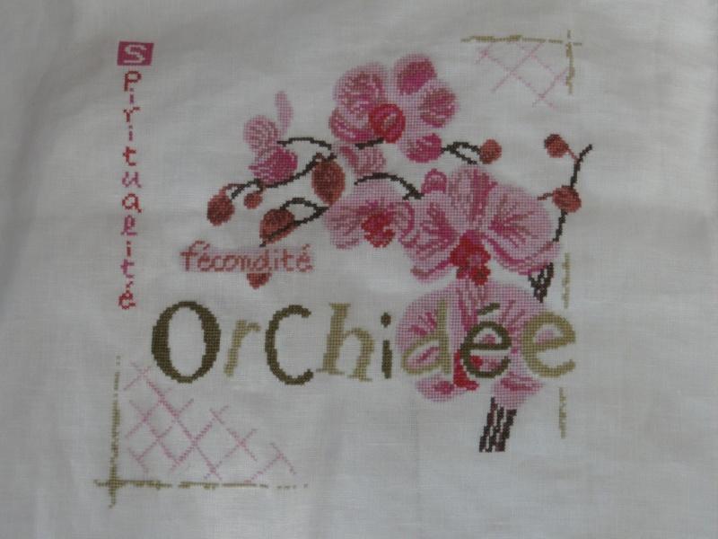 SAL Lilipoint Orchidée - FINI - Page 30 Dsc06174
