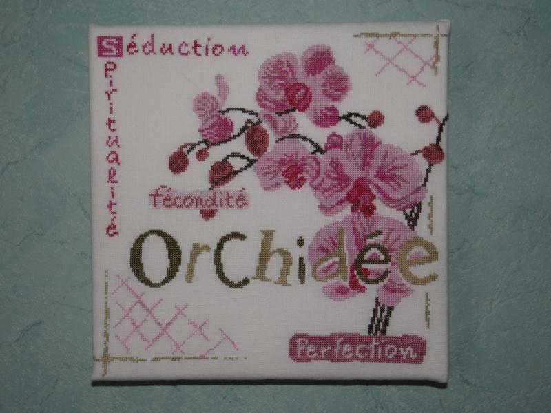 SAL Lilipoint Orchidée - FINI Dsc06230