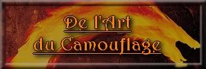WCH n°9 : Spécial 10 Ans ! Camouf11