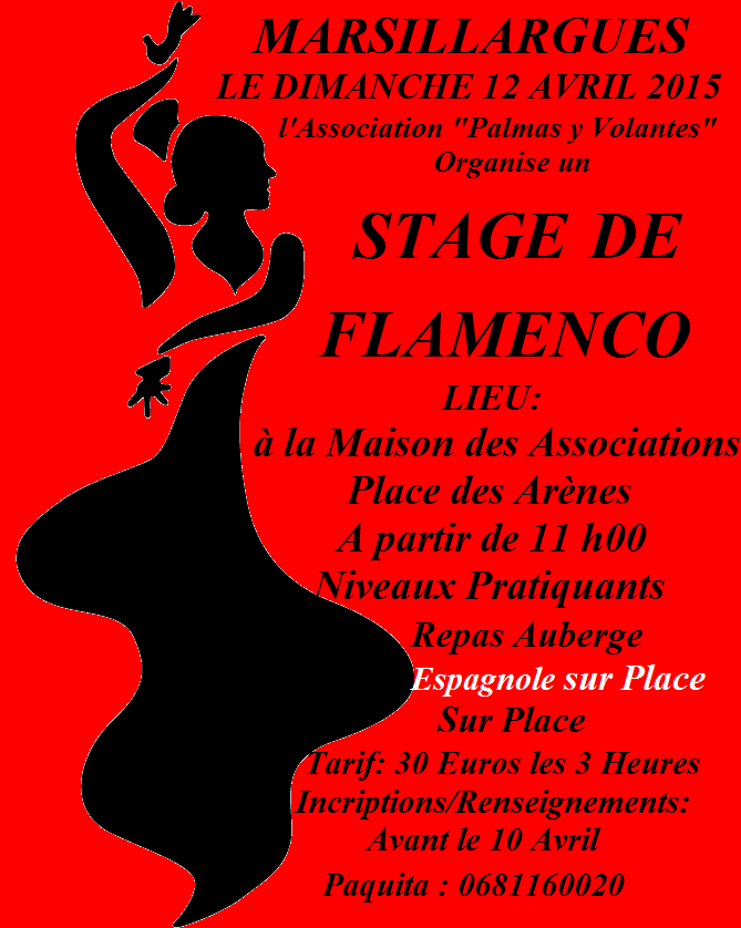 Stage Flamenco Stage_11