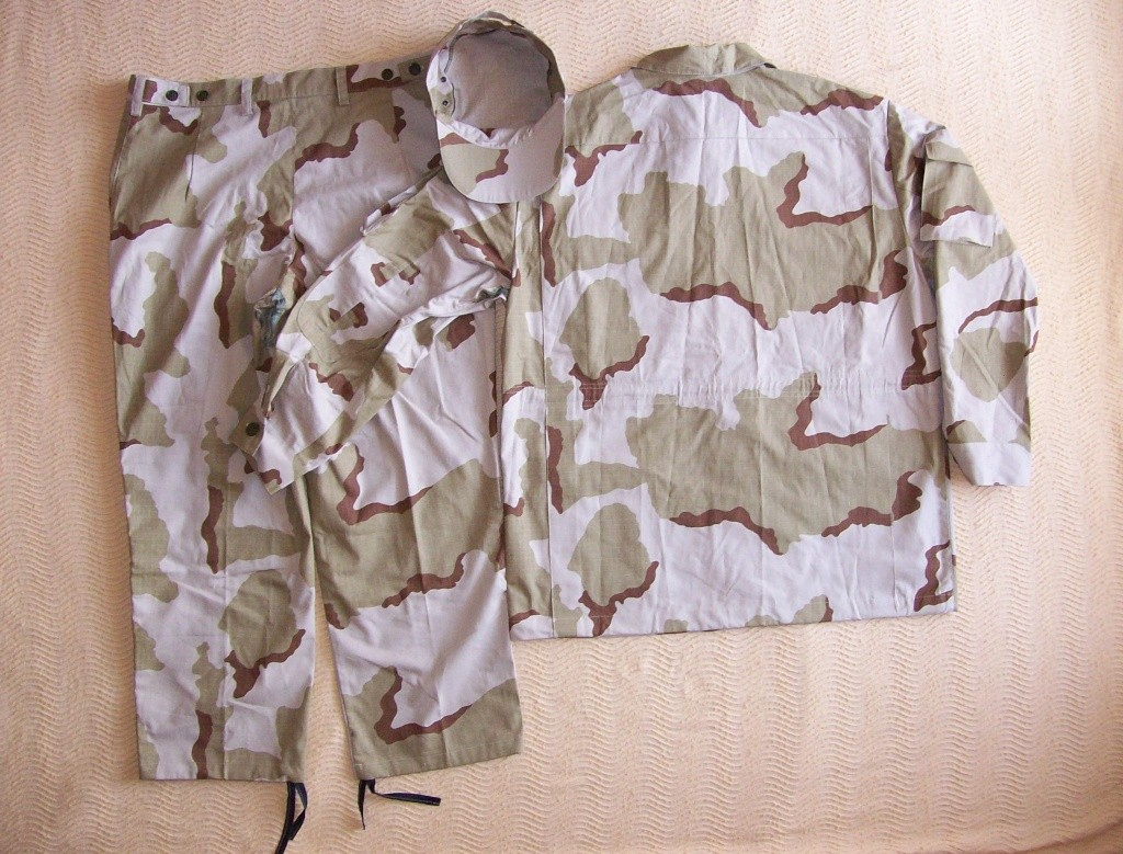 Belarussian camouflage - Page 2 100_5611