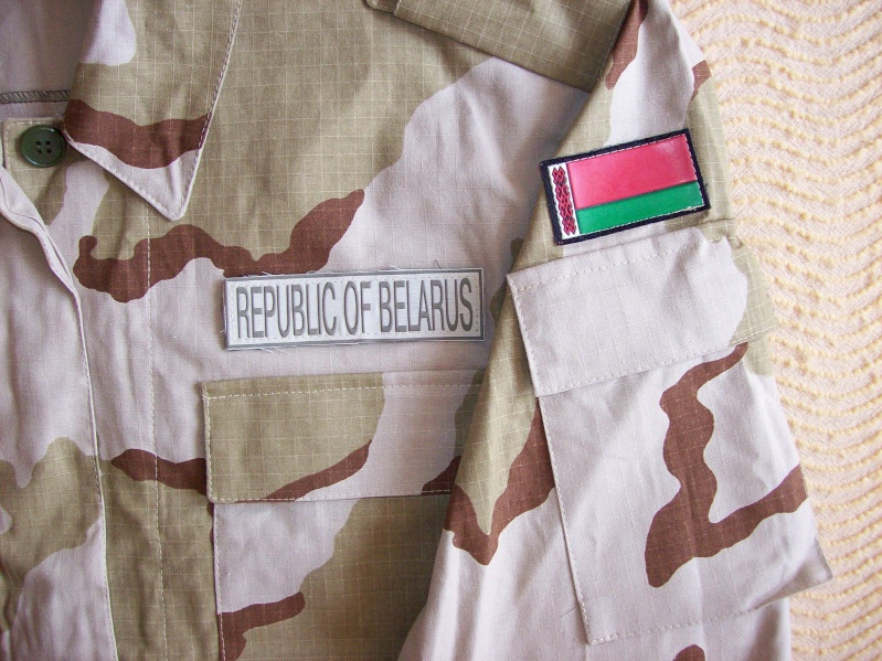 Belarussian camouflage - Page 2 100_5613
