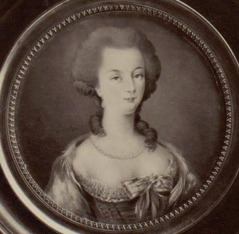 Vallayer - Marie-Antoinette, par Anne Vallayer-Coster Ma_par10