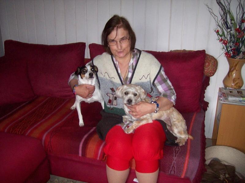 Jamais deux sans trois !! Petite Hadjy de 2 ans Adoptée  - Page 2 Hadjy_23