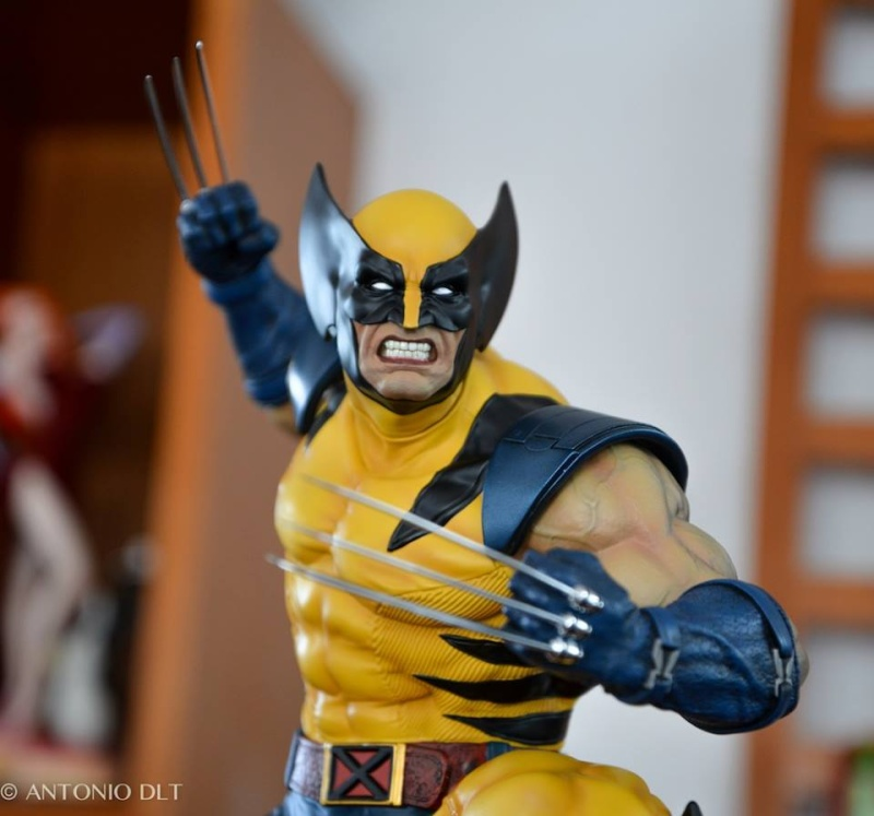 Premium Collectibles : Wolverine - Comics Version - Page 11 11249910