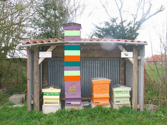 Bonne année pour l'apiculture en perspective ... Img_2211