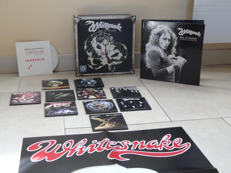 Whitesnake - Page 3 Dsc01313