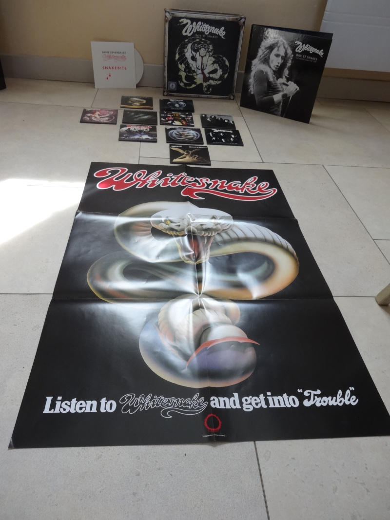 Whitesnake - Page 3 Dsc01314