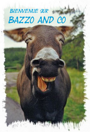 BAZZO AND CO