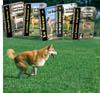 Forum des chiens Page-l11
