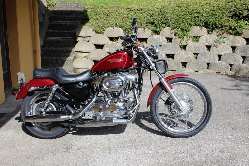 Harley Sportster 1200 Img_0310