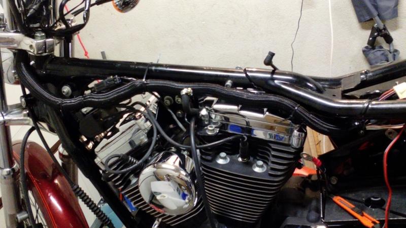 Harley Sportster 1200 Img_2033