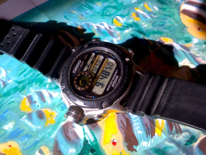 casio - Casio again..... Img01410