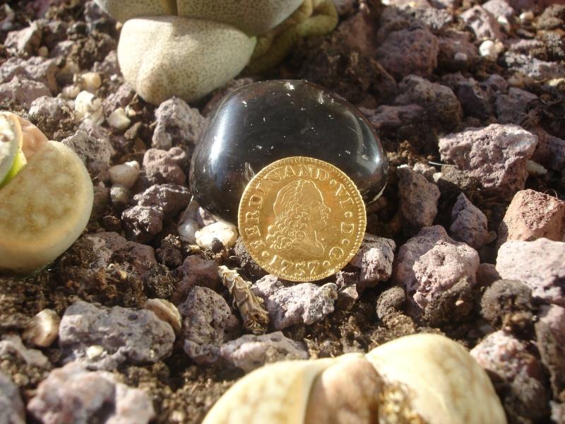1/2 Escudo. Fernando VI. 1757. Madrid Dsc09413