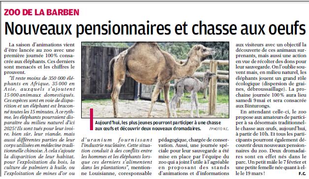 LA FAUNE ANIMALE MEDITERRANEENNE - Page 13 4010