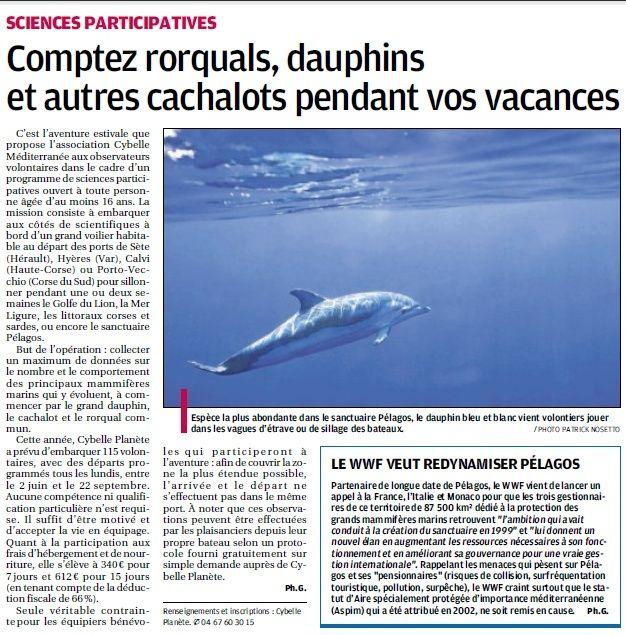 LA FAUNE ANIMALE MEDITERRANEENNE - Page 13 4112