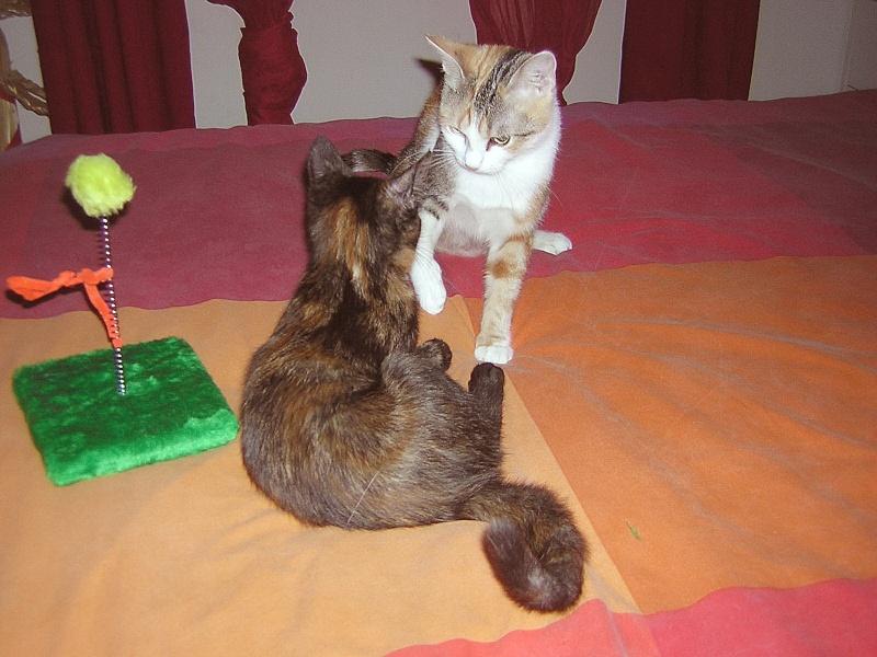 Floria et sa fille Maïlyn Dscn2427