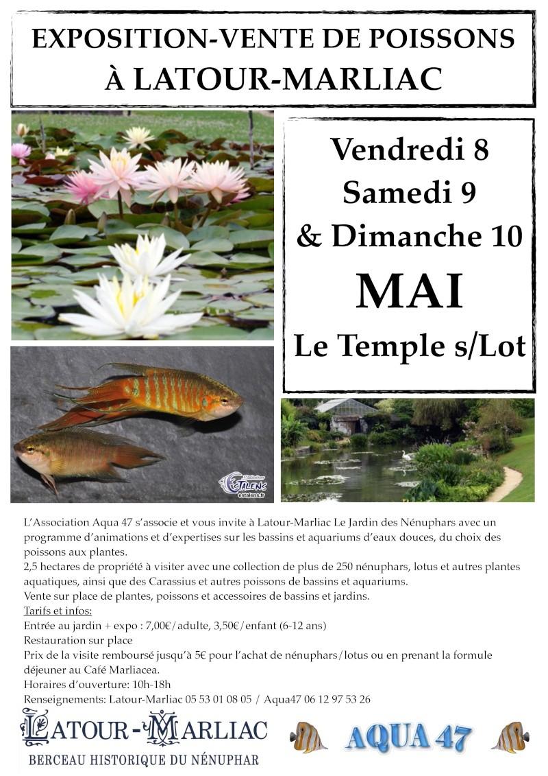 exposition et vente à Latour-Marliac Affich10