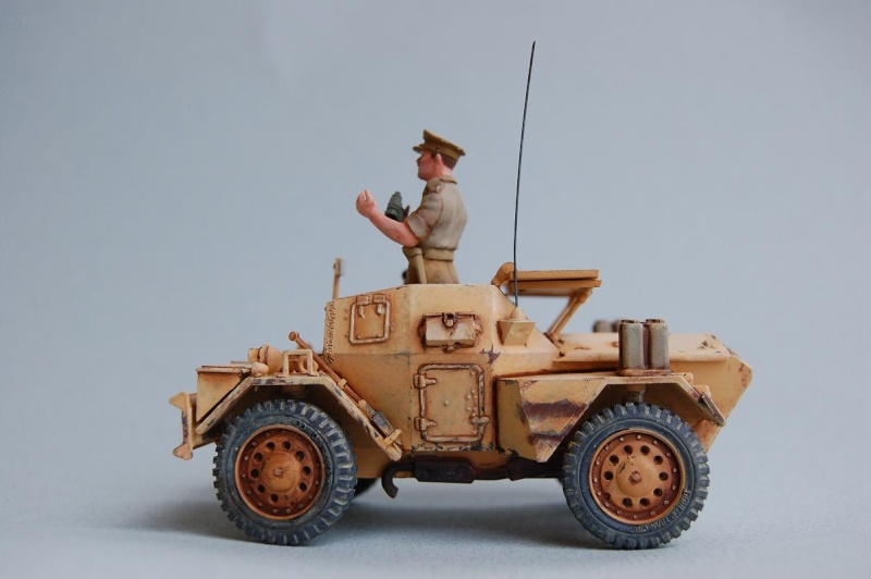 A la poursuite de l'Axe - Sud tunisien 1943  40-sco16