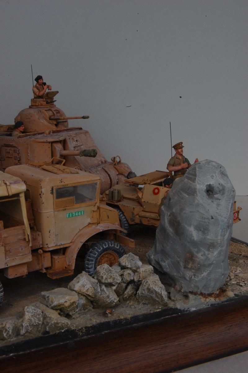 A la poursuite de l'Axe - Sud tunisien 1943  Axe3_022