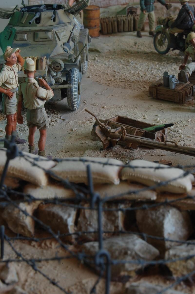 De Tobruk à El Alamein - Octobre 42 - Maquettes Tamiya et Italeri - Figurines MK35 - 1/35e Tobruk43