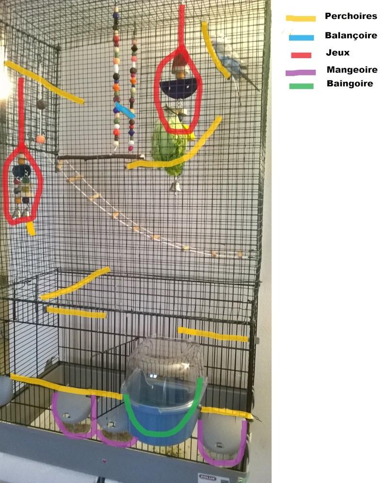 Bien organiser sa cage 2.0.  - Page 7 Wp_20110