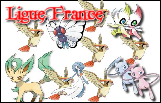 Pokémon: La ligue France