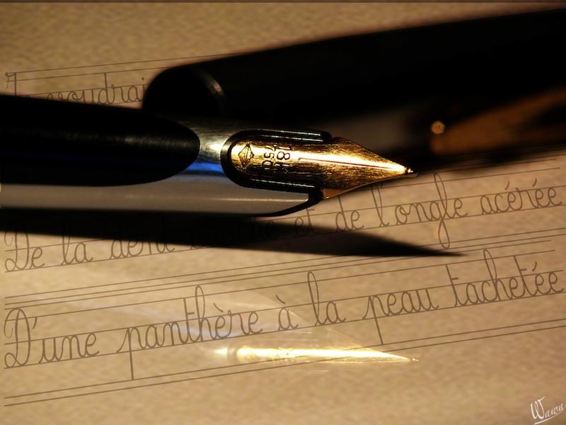 La plume du poète P1250810