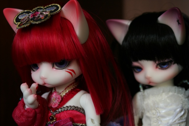 [Zuzu Delf Persi (LUTS)] Perle, Rubis & Milady (chats-chats) Img_0021