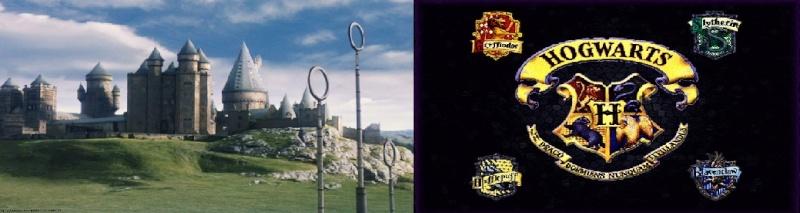Colegio Howarts de Magia y Hechiceria