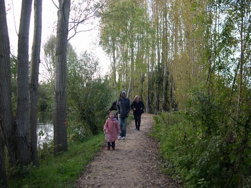Petite ballade dans les marais de Bourges Dscn3029