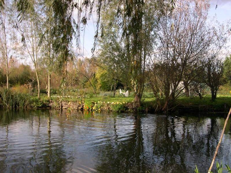 Petite ballade dans les marais de Bourges Dscn3033