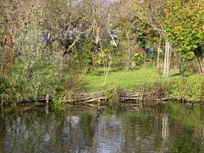 Petite ballade dans les marais de Bourges Dscn3036