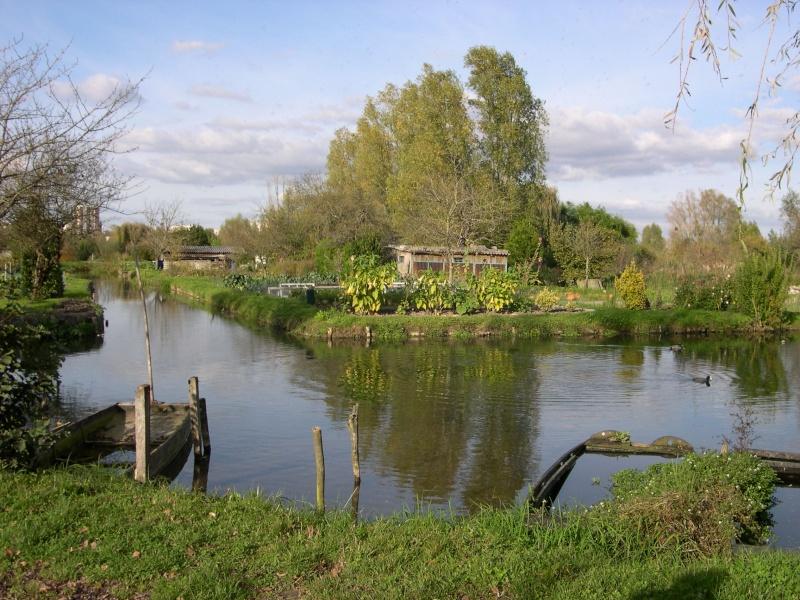 Petite ballade dans les marais de Bourges Dscn3040