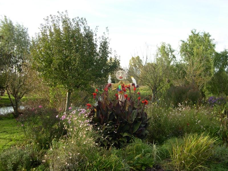 Petite ballade dans les marais de Bourges Dscn3045