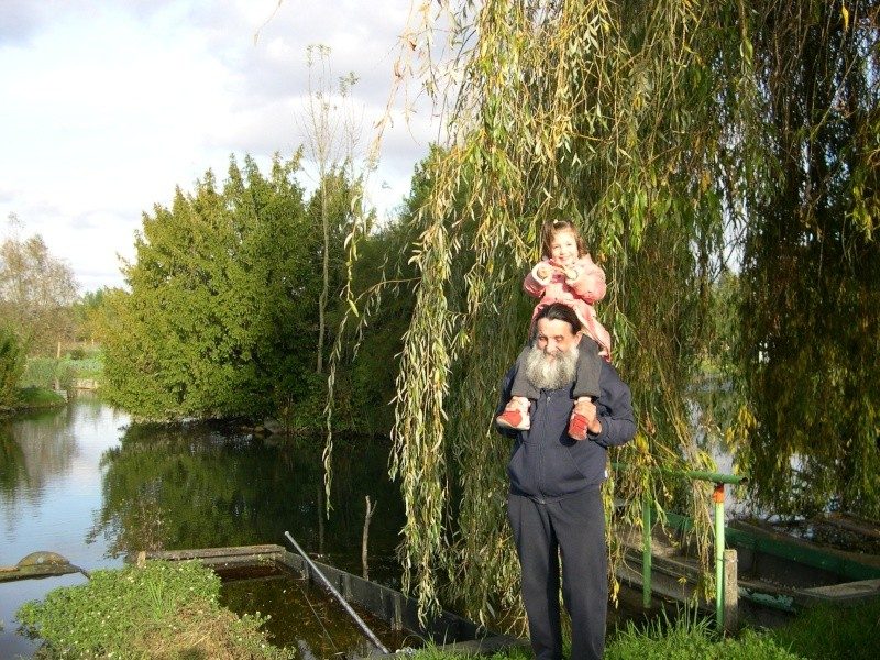 Petite ballade dans les marais de Bourges Dscn3059