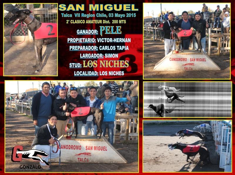 GRANDES CLASICOS EN CANODROMO SAN MIGUEL DE TALCA PARA ESTE DOMINGO 3 DE MAYO 2-clas12