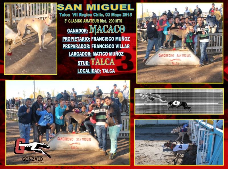 GRANDES CLASICOS EN CANODROMO SAN MIGUEL DE TALCA PARA ESTE DOMINGO 3 DE MAYO 3-clas12