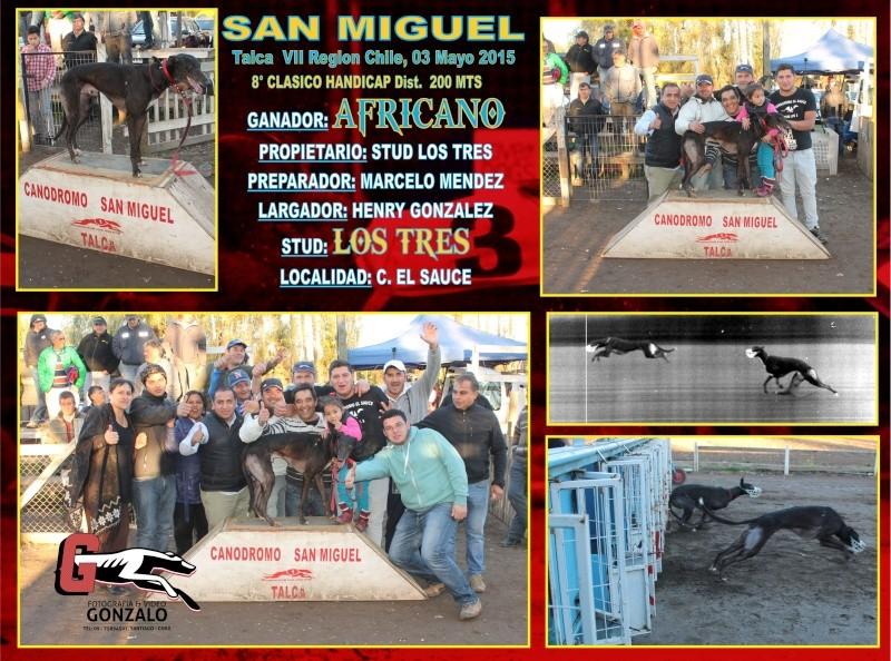 GRANDES CLASICOS EN CANODROMO SAN MIGUEL DE TALCA PARA ESTE DOMINGO 3 DE MAYO 8-clas12