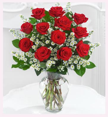 Roses Redros10