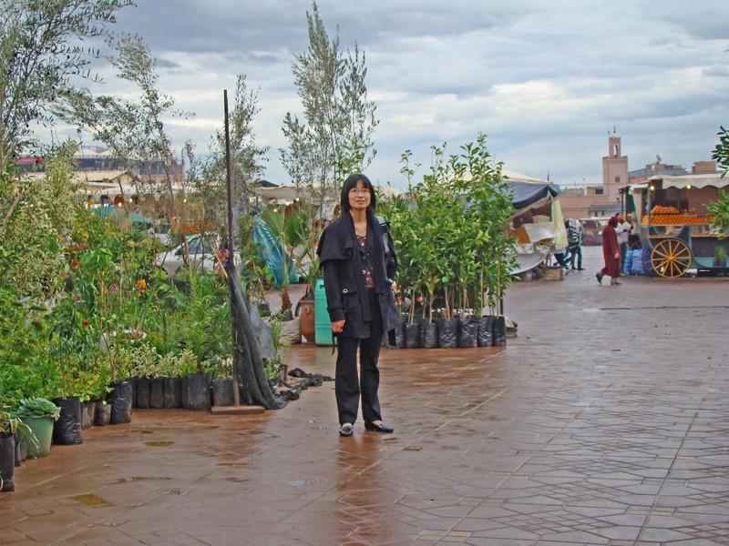 Escapade à Marrakech et ses environs ... sous la pluie Marrak10