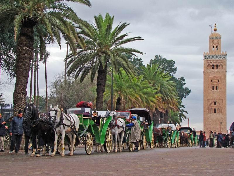 Escapade à Marrakech et ses environs ... sous la pluie Marrak12