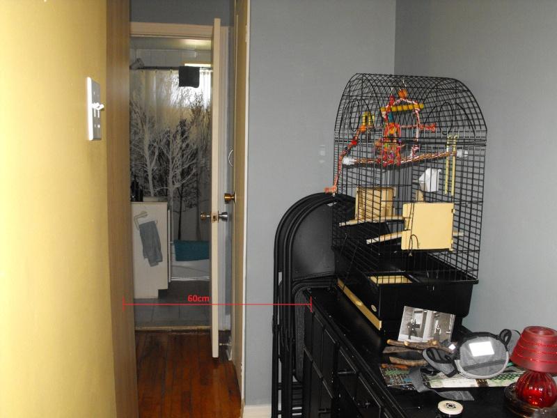 Espace minimal manquant Cage_012