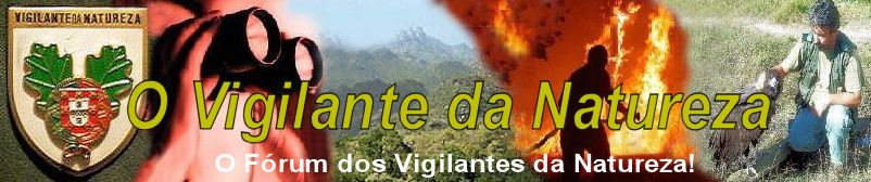 Calendário Vigila10