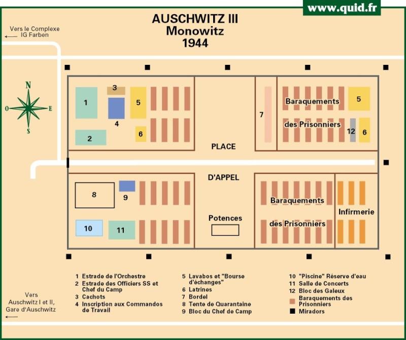 Camps de concentration et d'extermination - Page 3 Auschw13