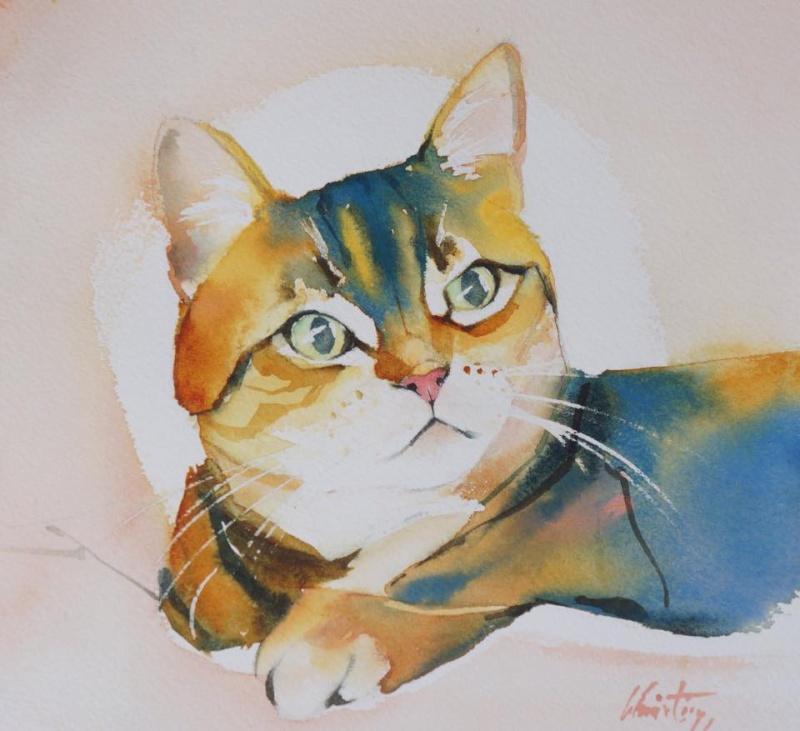 Le portrait de votre chat à l'aquarelle...Au profit de l'Ecole du chat de Quiberon - Page 18 Mousti11