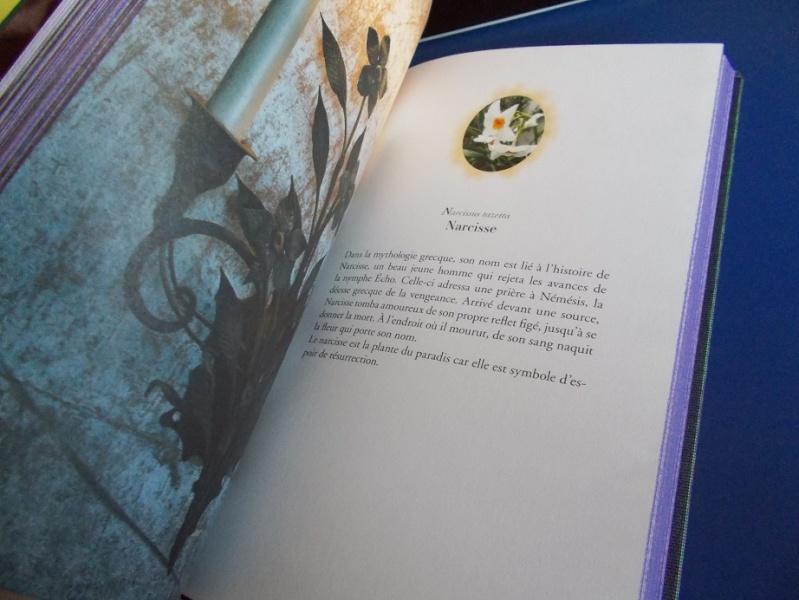 Livres sur l´art - Page 4 A87