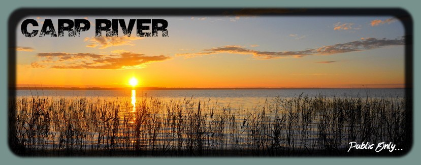 Carp'River
