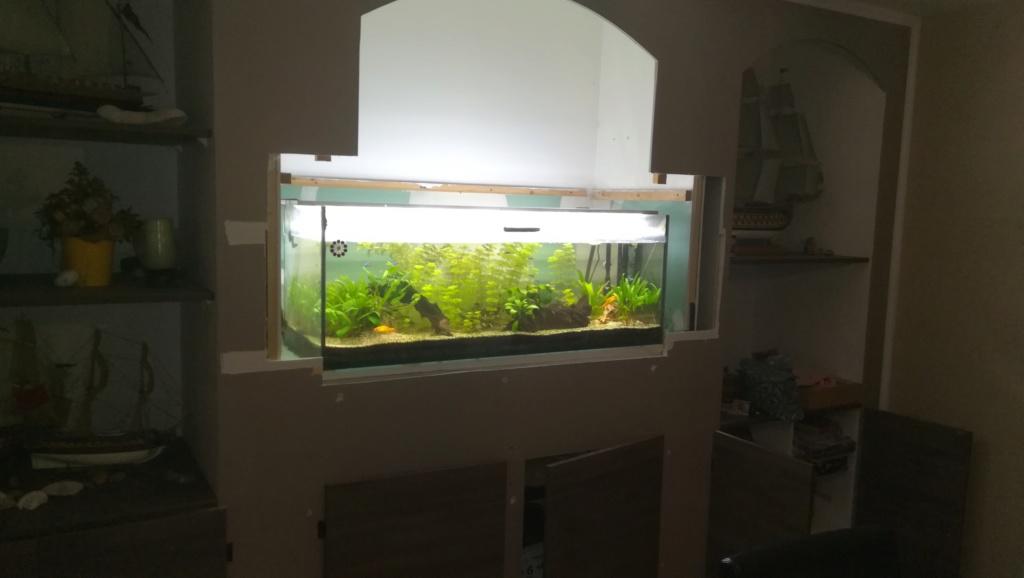 Nouvel aquarium 300l pour la maison Img_2014